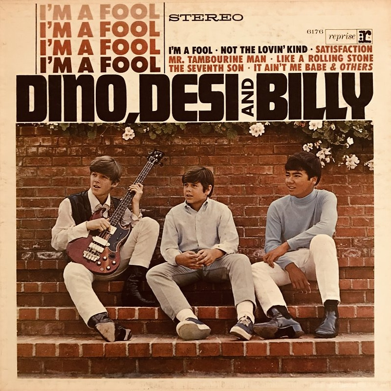 I'M A FOOL by Dino, Desi And Billy (1965)