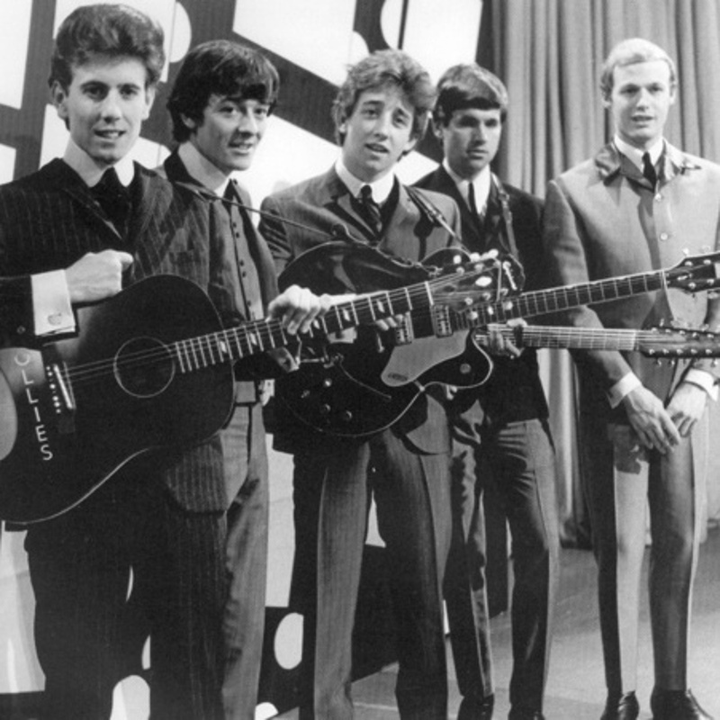 The Hollies / 1965